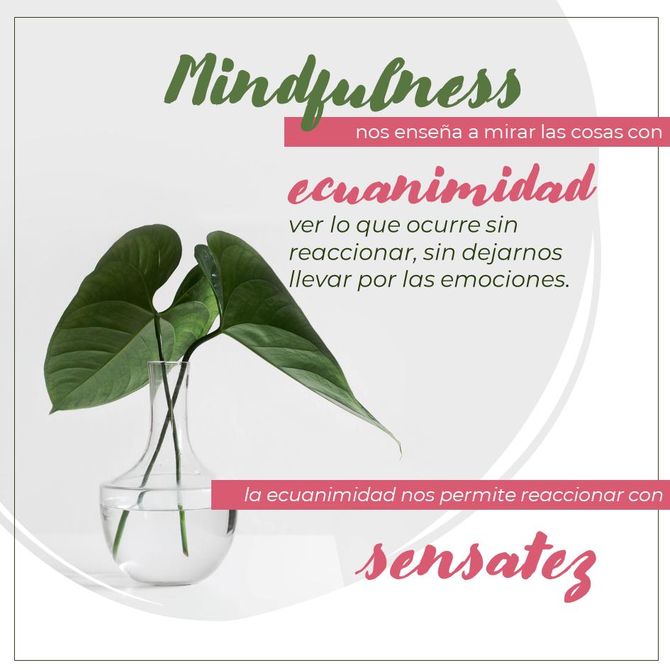 MINFULNESS como solucion al sufrimiento